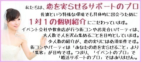 佐渡市婚活結婚恋愛コン.jpg